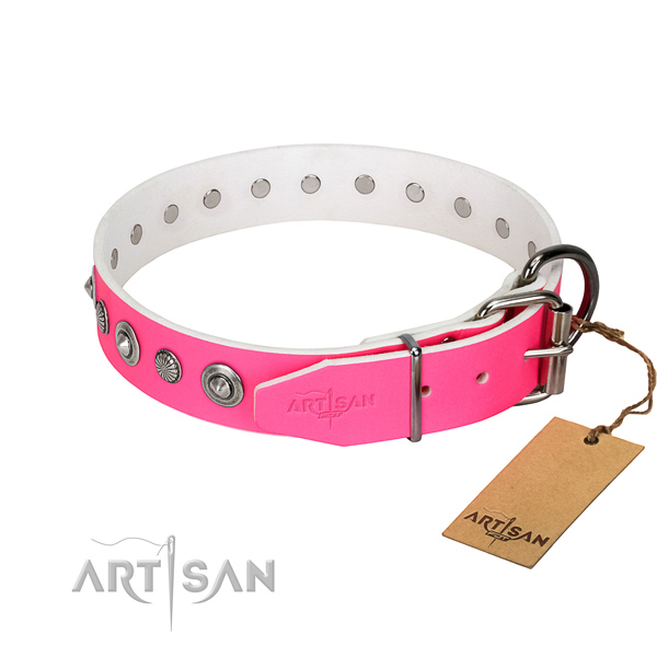 Durable full grain natural leather dog collar with inimitable studs