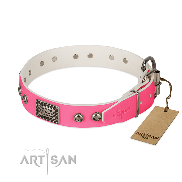 Durable traditional buckle on comfortable wearing dog collar
