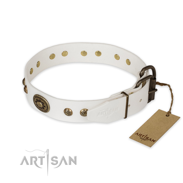 Reliable hardware on genuine leather collar for walking your canine