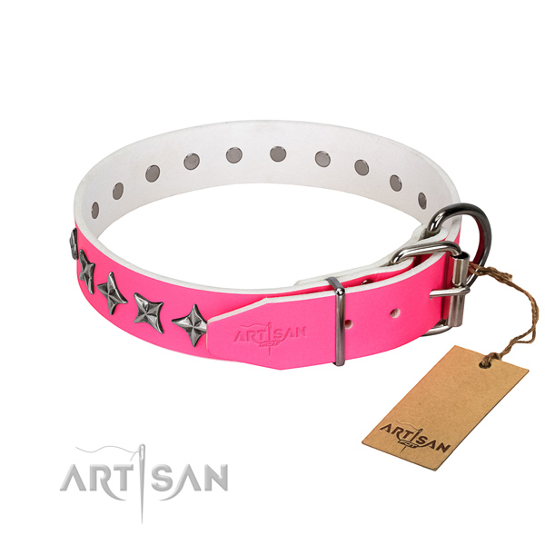 Top quality full grain leather dog collar with extraordinary studs