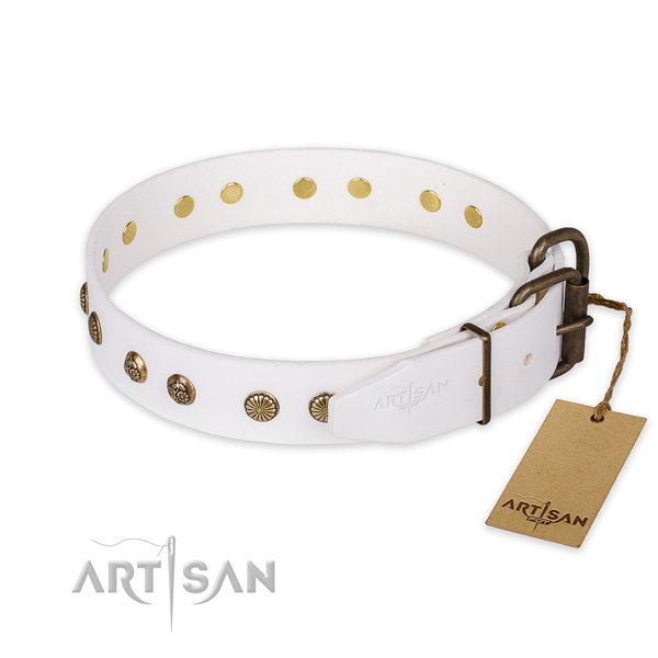 Corrosion proof hardware on leather collar for your impressive pet