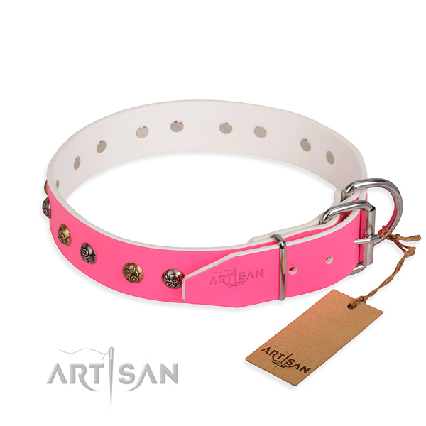 Natural leather dog collar with inimitable rust resistant studs