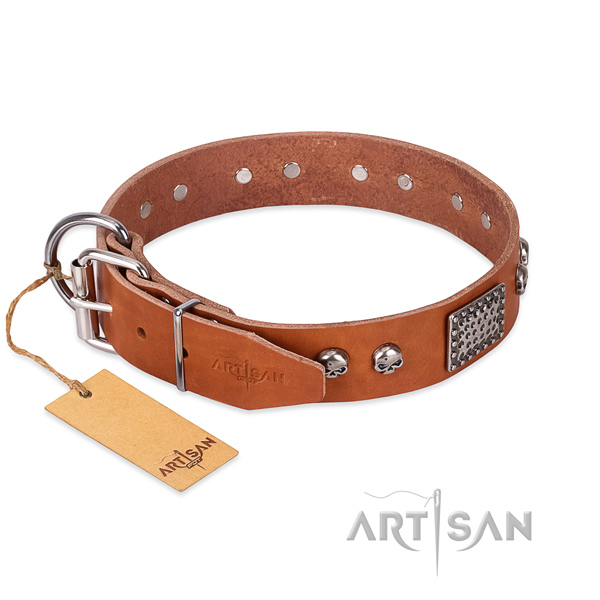 Corrosion proof D-ring on comfortable wearing dog collar