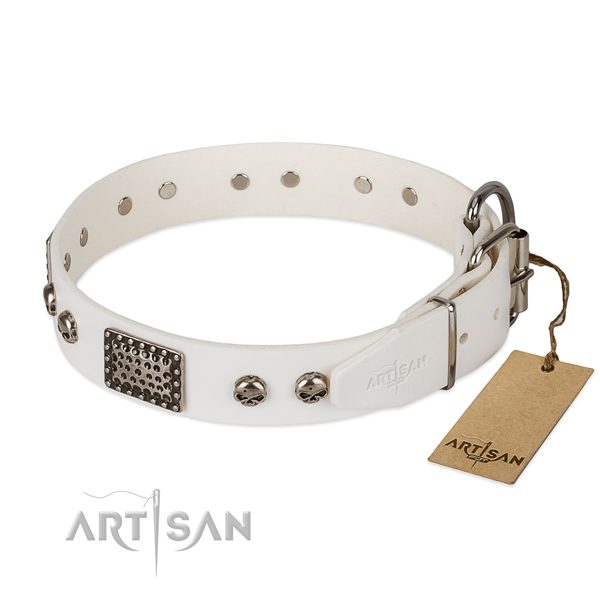 Rust resistant D-ring on comfortable wearing dog collar