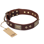 """Loving Owner"" FDT Artisan Decorated Leather American Bulldog Collar with Plates and Studs"