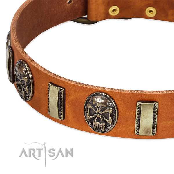 Rust resistant adornments on full grain genuine leather dog collar for your doggie