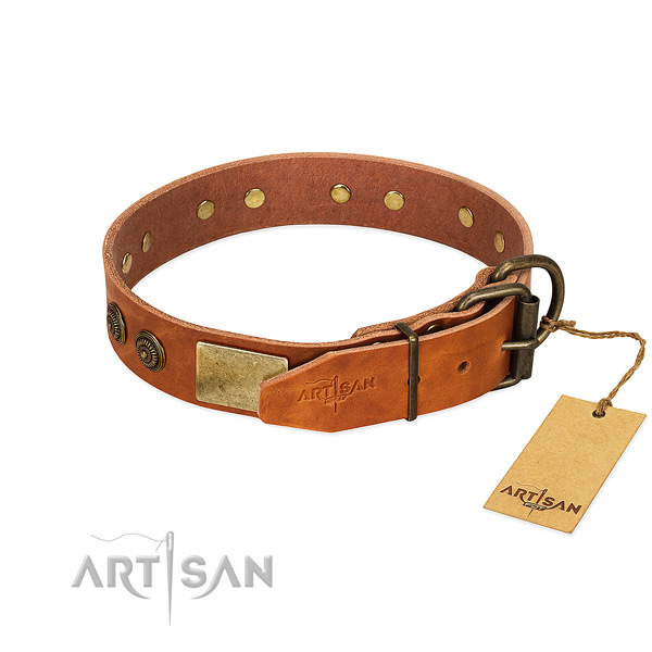 Corrosion proof fittings on genuine leather collar for everyday walking your canine