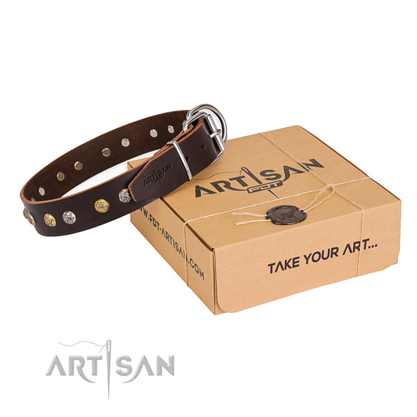 Top rate natural genuine leather dog collar handcrafted for daily walking