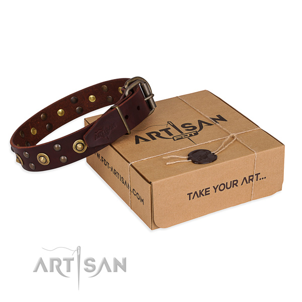 Rust-proof hardware on full grain leather collar for your beautiful dog