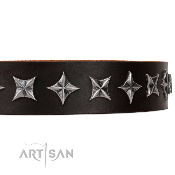 Daily walking embellished dog collar of finest quality full grain leather
