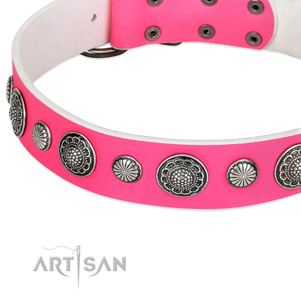 Genuine leather collar with reliable hardware for your attractive four-legged friend