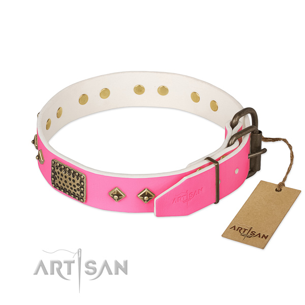 Rust-proof buckle on comfortable wearing dog collar