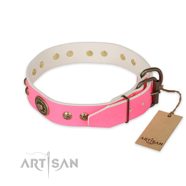 Rust resistant fittings on genuine leather collar for stylish walking your doggie