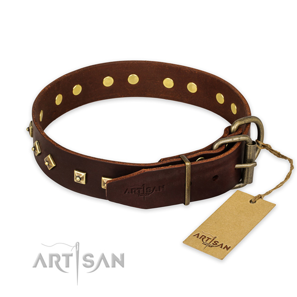 Reliable traditional buckle on genuine leather collar for daily walking your canine