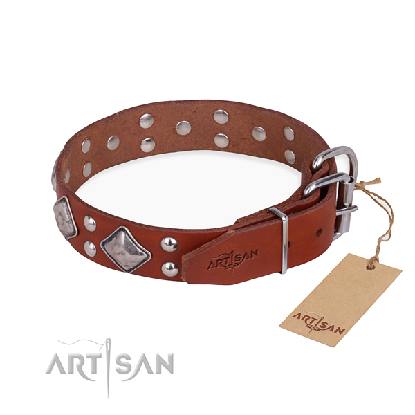 Natural leather dog collar with exceptional durable adornments