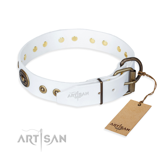 Leather dog collar made of flexible material with rust resistant embellishments