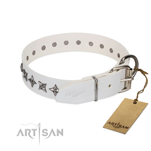 Reliable natural leather dog collar with top notch studs