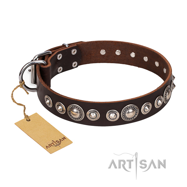 High quality studded dog collar of genuine leather