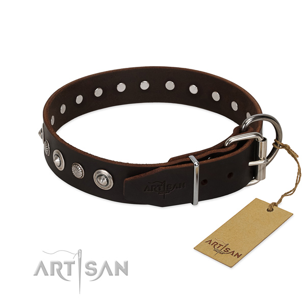 Strong full grain natural leather dog collar with impressive embellishments