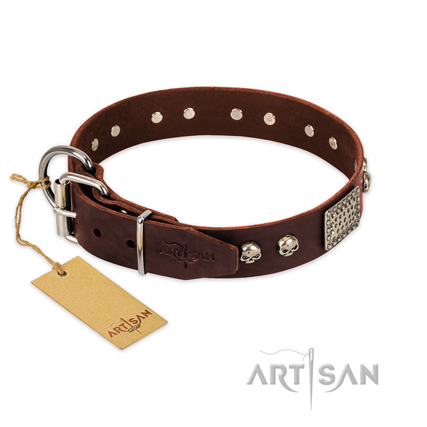 Strong fittings on stylish walking dog collar