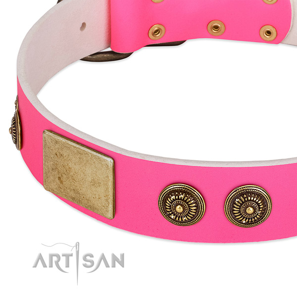 Perfect fit dog collar handmade for your handsome pet