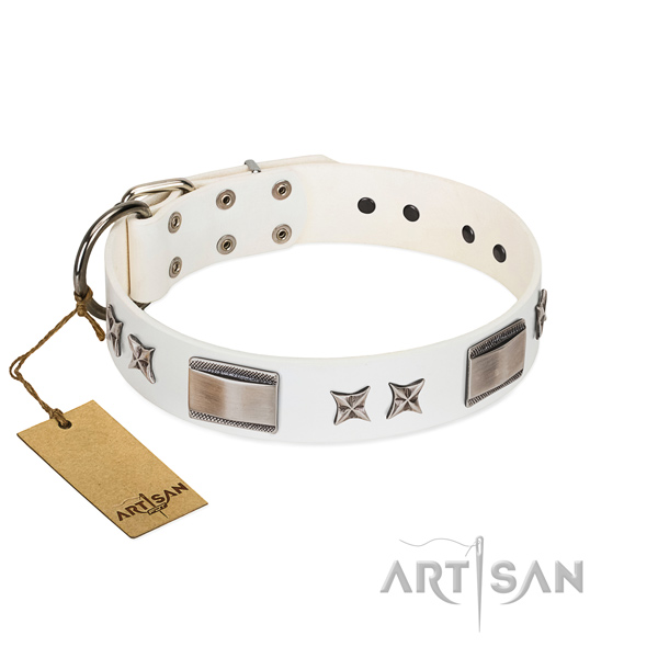 Fashionable dog collar of full grain genuine leather