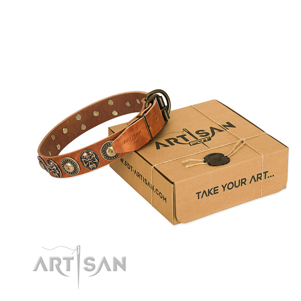 Rust resistant decorations on dog collar for everyday walking