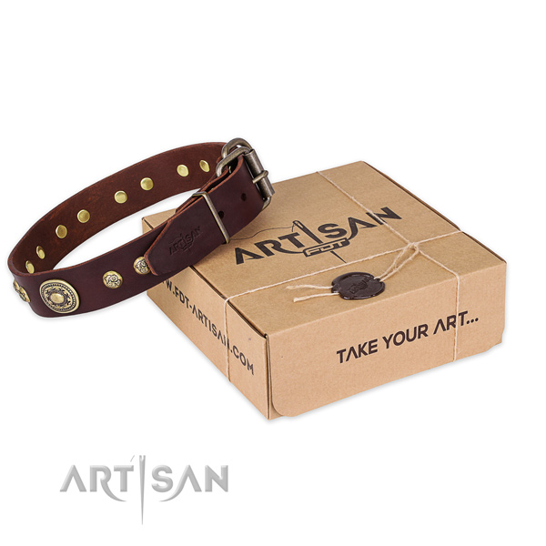 Reliable D-ring on full grain genuine leather dog collar for easy wearing