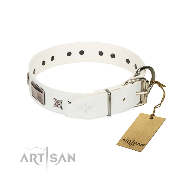 Remarkable collar of leather for your attractive canine