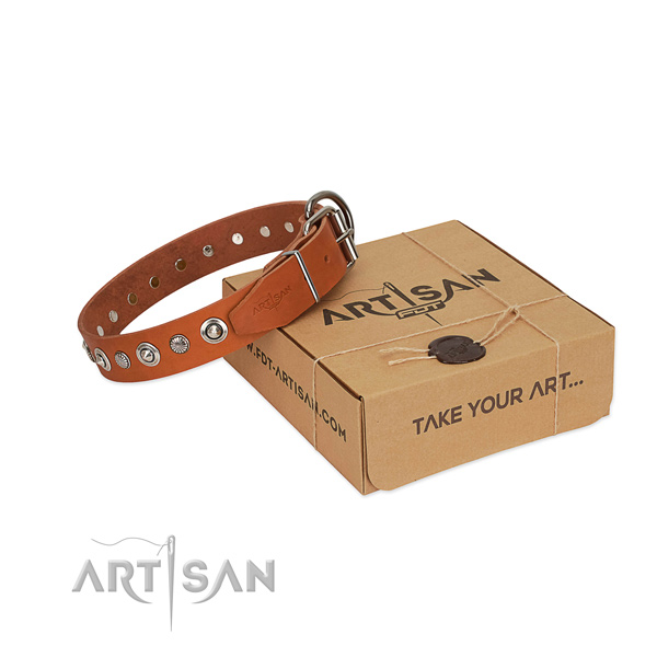 Best quality full grain genuine leather dog collar with top notch adornments