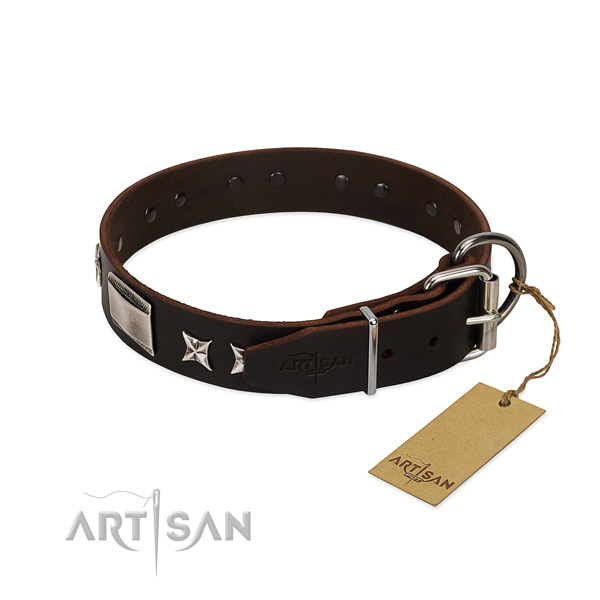Amazing collar of natural leather for your stylish dog