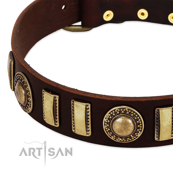 High quality full grain leather dog collar with rust resistant buckle