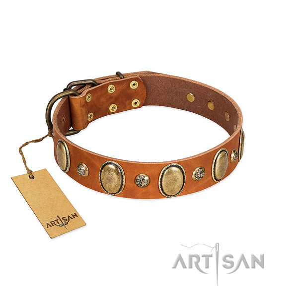 Genuine leather dog collar of best quality material with amazing embellishments