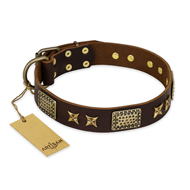 """Sparkling Bronze"" FDT Artisan Genuine Leather American Bulldog Collar with Bronze Look Stars and Plates"