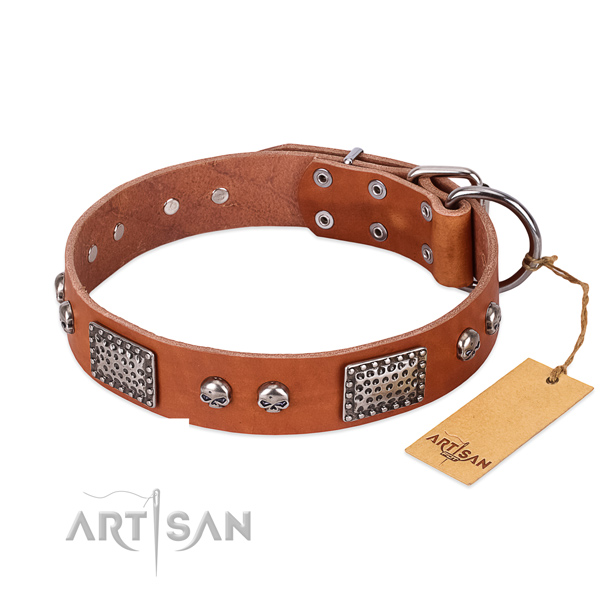 Adjustable genuine leather dog collar for everyday walking your canine