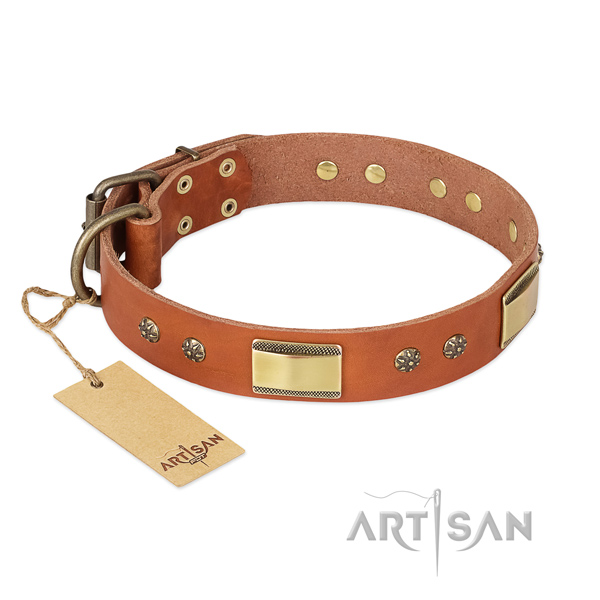 Exquisite full grain leather collar for your doggie