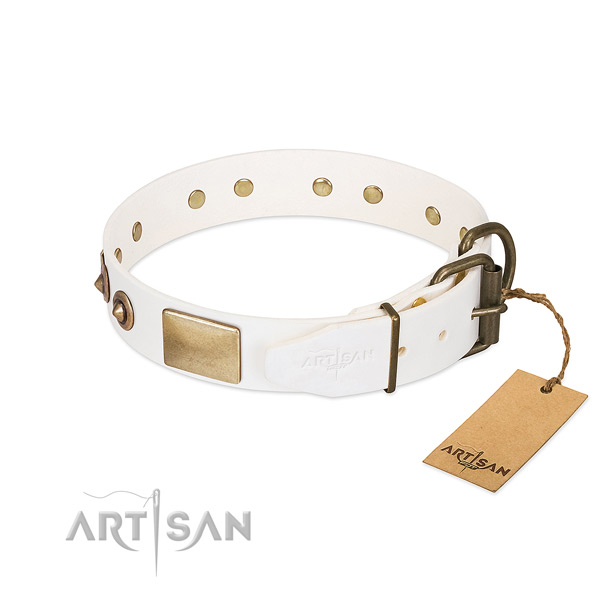 Rust resistant decorations on leather dog collar for your doggie
