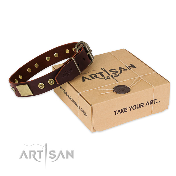 Rust resistant decorations on dog collar for stylish walking