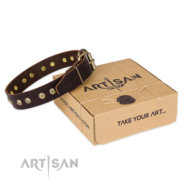 Rust-proof traditional buckle on full grain natural leather collar for your stylish canine