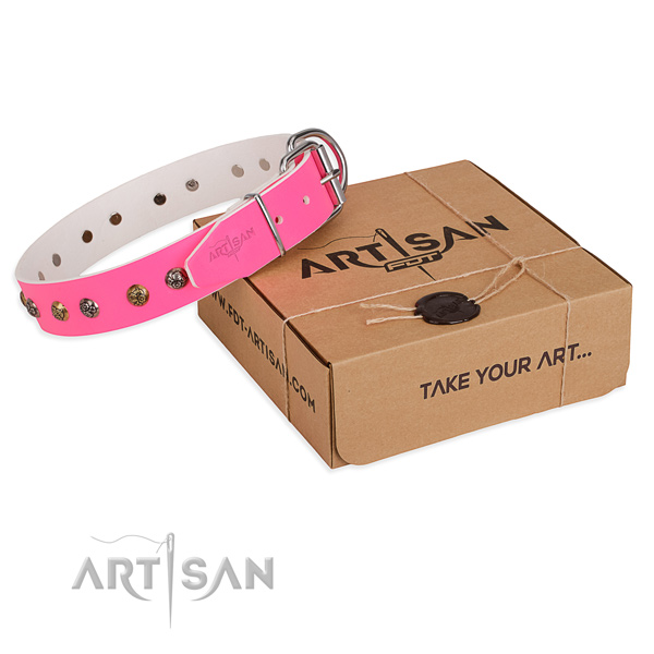 Handy use dog collar with Significant durable decorations