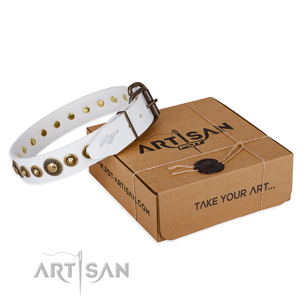 High quality natural genuine leather dog collar handcrafted for walking