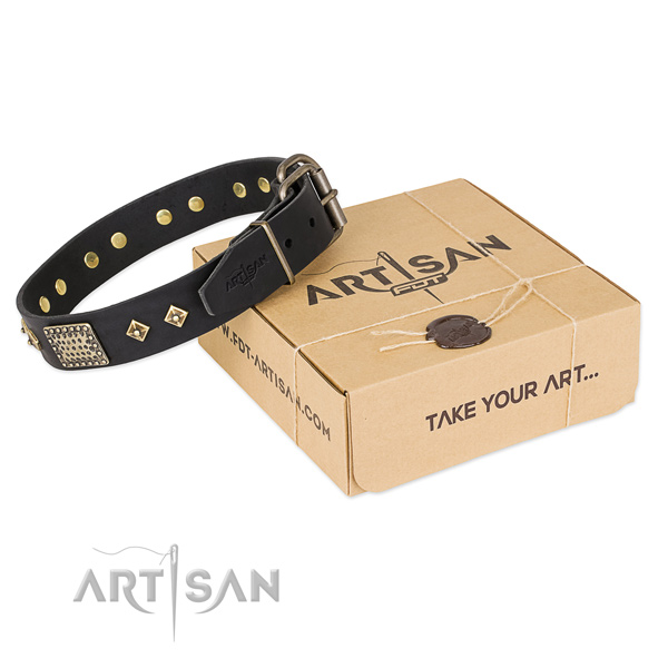 Trendy full grain natural leather collar for your beautiful four-legged friend