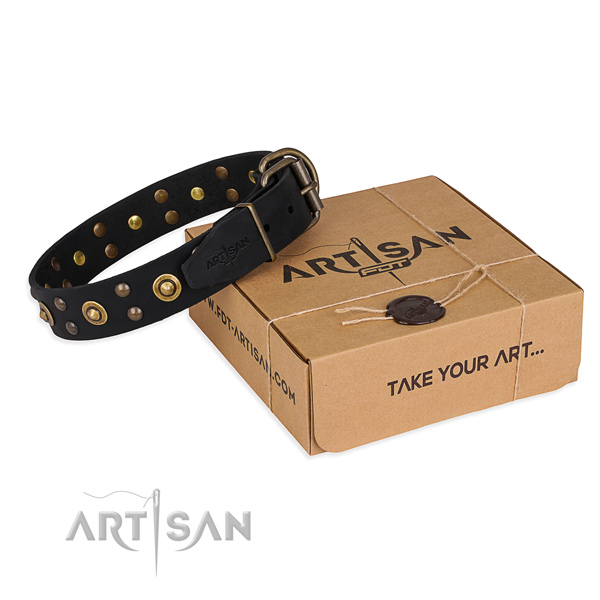 Reliable buckle on full grain leather collar for your handsome canine