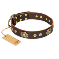 """One-of-a-Kind"" FDT Artisan Handmade Decorated Brown Leather American Bulldog Collar"