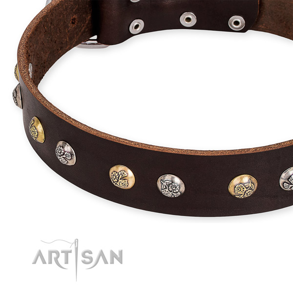 Full grain natural leather dog collar with unique rust-proof embellishments