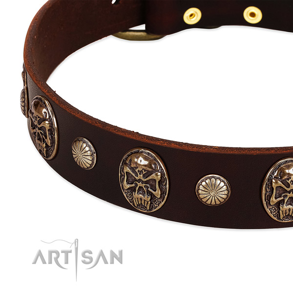 Genuine leather dog collar with embellishments for handy use