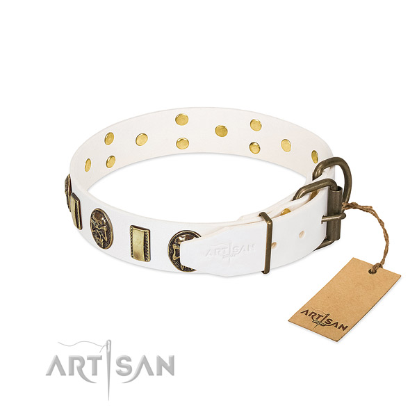 Rust-proof D-ring on genuine leather collar for basic training your doggie