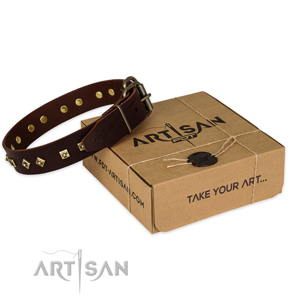 Corrosion resistant buckle on full grain natural leather dog collar for comfy wearing