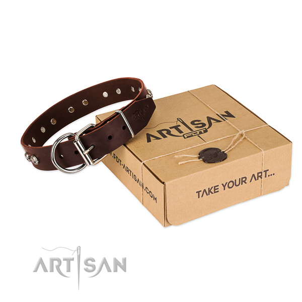 Rust-proof adornments on dog collar for walking