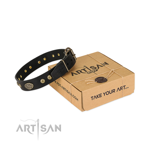 Rust-proof traditional buckle on full grain leather dog collar for your dog